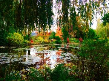 Waterlily Pond in Monet's Garden